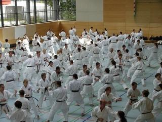 Karate Instruktoriai