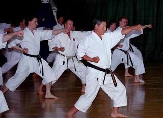 Karate-do treniruotė