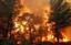 Пожары лесов фотографии 7